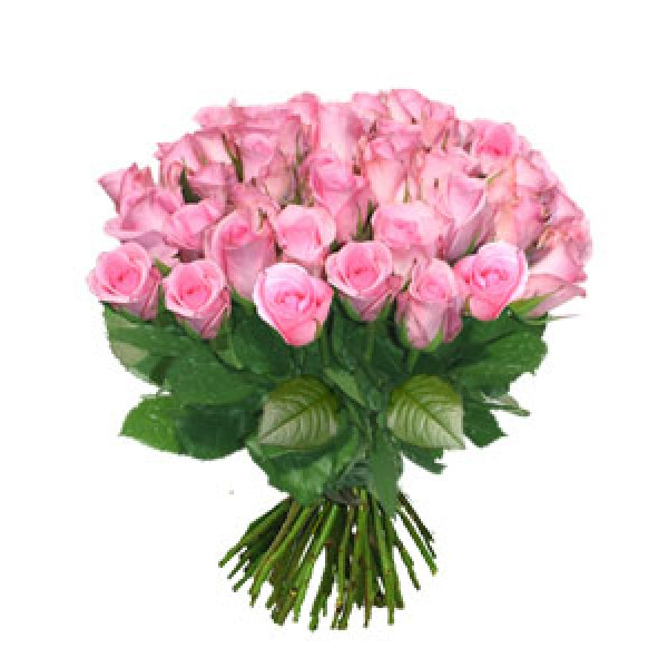 Bouquet de 20 roses roses for Bouquets de roses