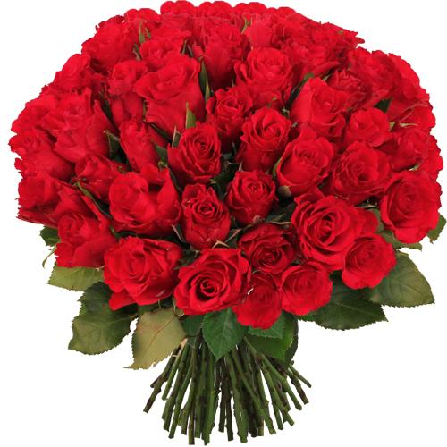 bouquet de 100 roses rouges - bouquet top vip